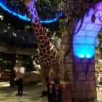 Plaza Senayanの子供向け動物レストラン MADAGASKAR
