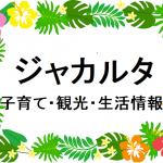 日本語を話せる小児科医、ジョハン先生の日曜診療とSOS無料送迎サービス