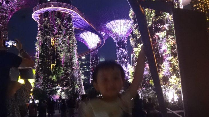 タイ・シンガポールの日系スーパーと生鮮品買い出し時の裏技