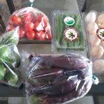 これぞ本当の有機野菜!ボゴールのBSP Farm