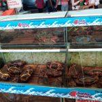 アンチョールで新鮮な海鮮料理が食べられるシーフードレストラン【バンダールジャカルタ】