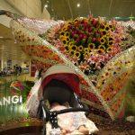 シンガポールのチャンギ空港はマッサージチェアやシンガポールツアーまで無料!