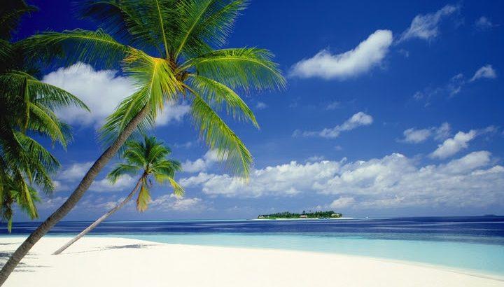 ジャカルタで利用する旅行会社のご紹介とJ Net Travelトラベル移転情報